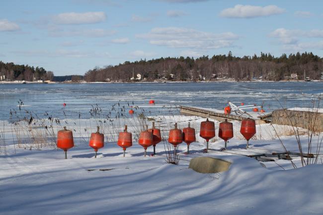 Våren börjar göra sig påmind i början av mars 2013.
